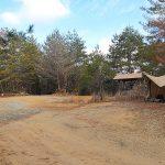 【兵庫】ちいさな森キャンプ村をブログで紹介!林間フリーサイトで電源もあるのが嬉しい